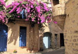 Pezenas-with-bougainvilla