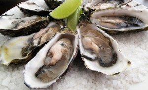 Oysters_690