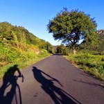 Cycling in Languedoc