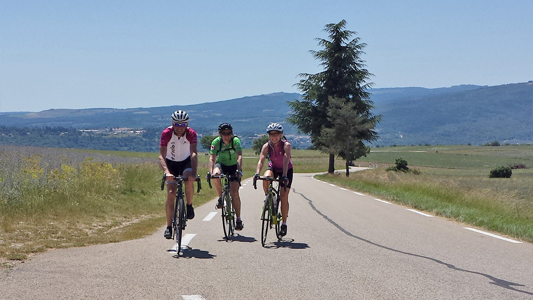 Cycling in Lavender, Provence