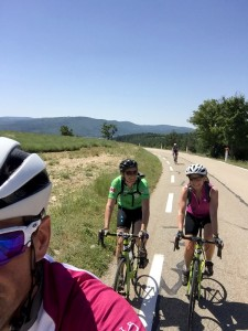Cycling in the Lavendar fields, Provence