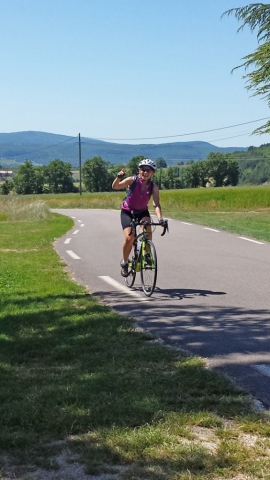 Cyclist in the Lavender, Provence region