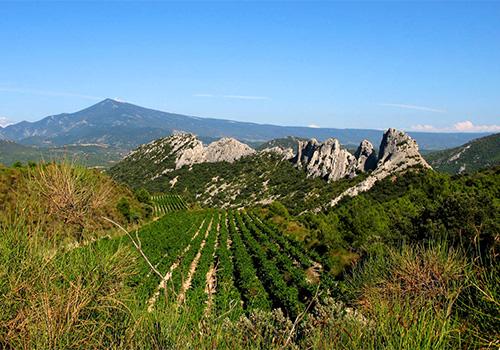 Les Dentelles, Provence