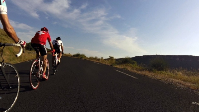 Group cycling in Haut Languedoc