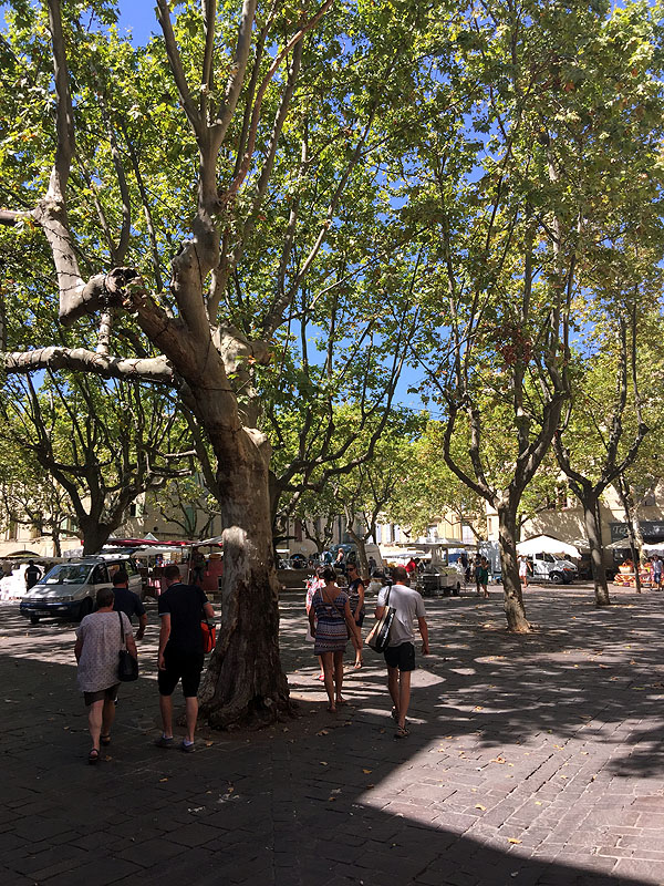 Central square in Uzès, Languedoc