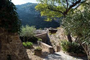 Village Garden, St. Guilhem le Desert, Languedoc