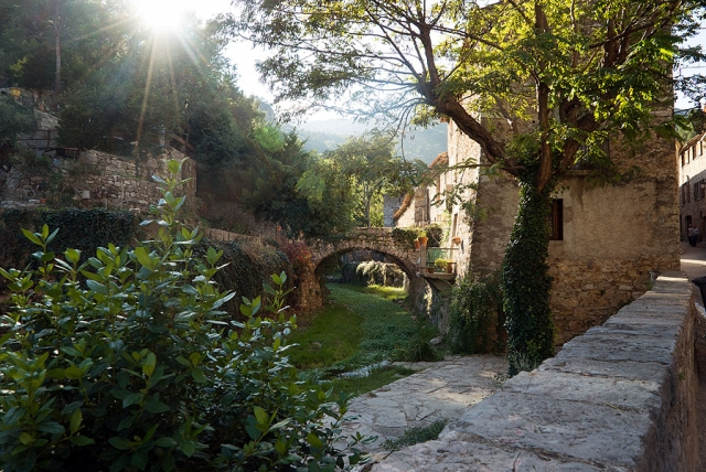 Ancient Bridge in St. Guilhem le Desert, Languedoc