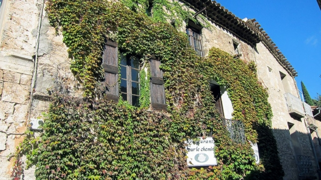 Vines Covered Manor, St. Guilhem le Desert, Languedoc