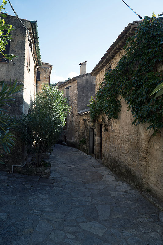 Charming Narrow Street in St. Guilhem le Desert, Languedoc