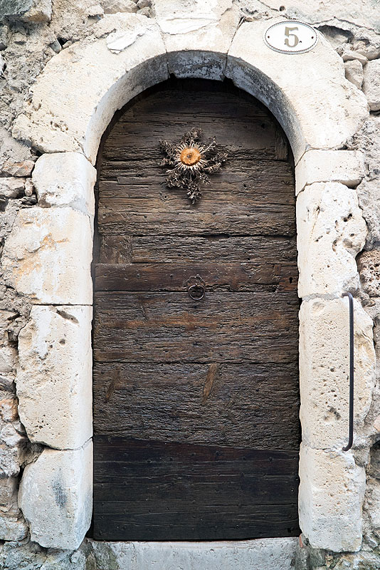 Cardabelle Flower on Doorway in St. Guilhem le Desert, Languedoc