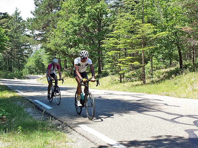 Cycling in the forest portion of the Bedoin ascent of Mt Ventoux