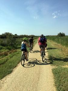 Day 3: Cycling towards the coast at Gruissan