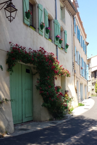 Row Houses in Flower in Pezenas, Languedoc