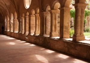 Abbaye de Valmagne, Languedoc