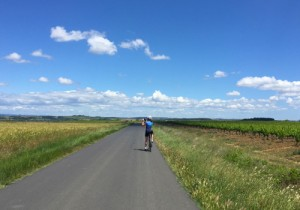 Cycling in Vines, Languedoc